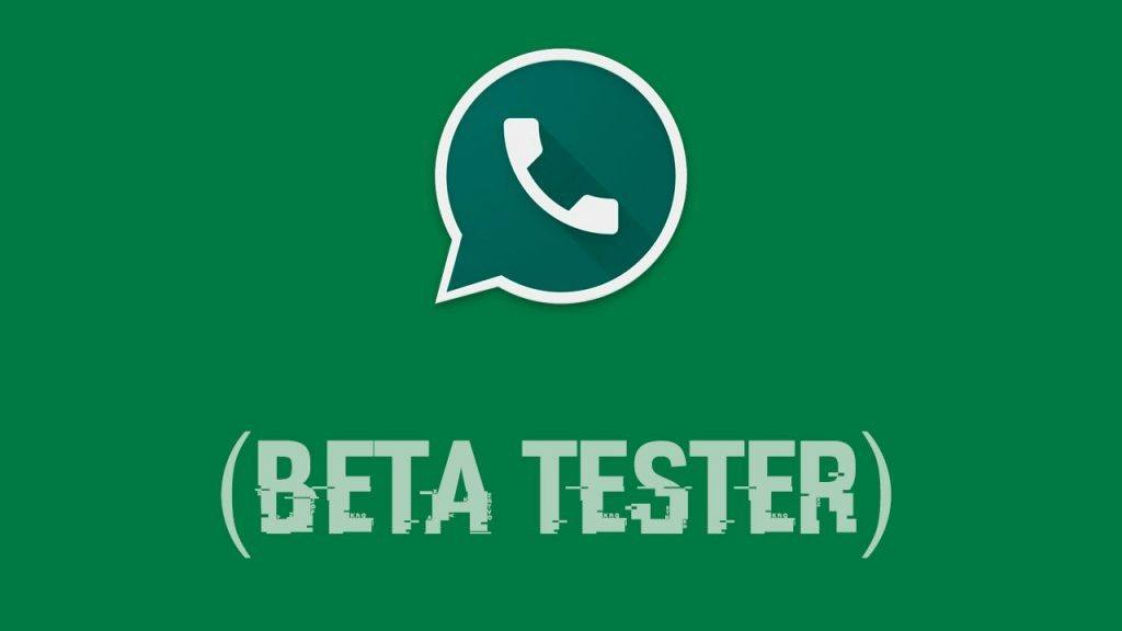 Beta Updater WhatsApp