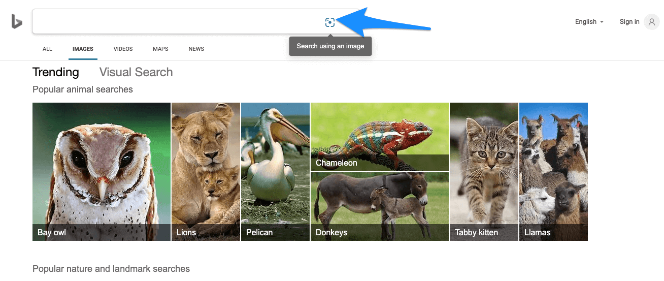 Bing Reverse Photo Lockup Search