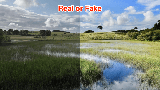 Check if Video is Real or Fake