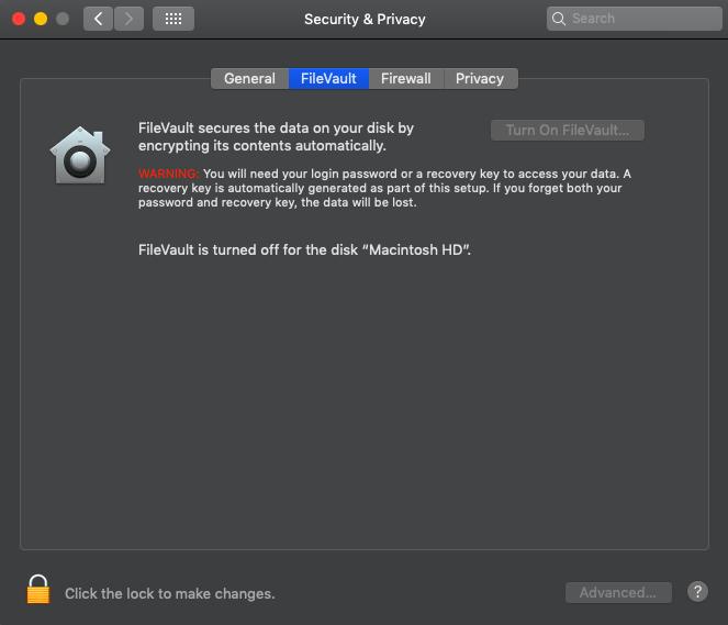 Disable FileVualt