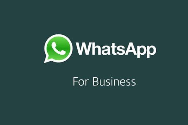 Earn Money using WhatsApp