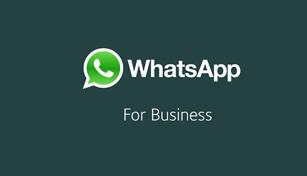 Earn Money using WhatsApp