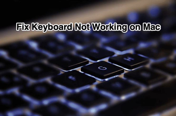 Fix Keyboard Not Working on Mac