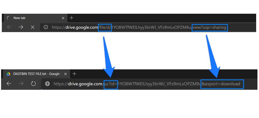 Google Drive Tweaked URL
