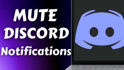 Mute Discord Notifications
