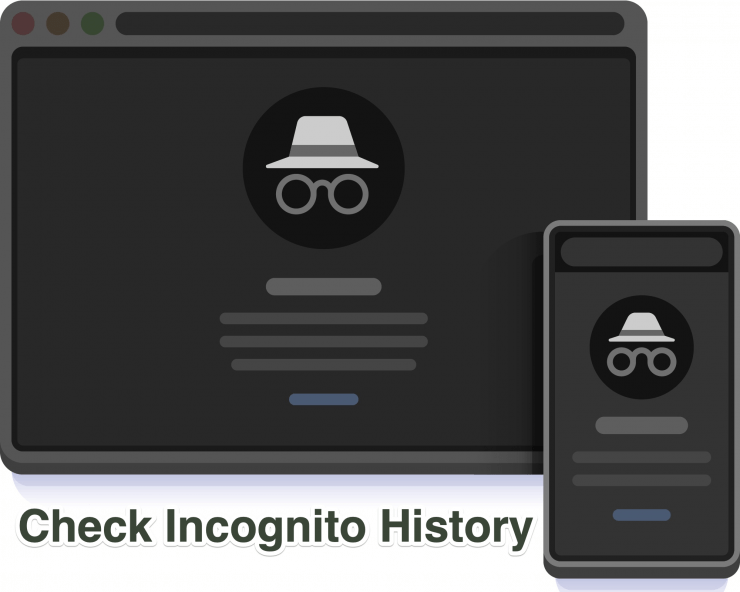 See Incognito History for Chrome PC