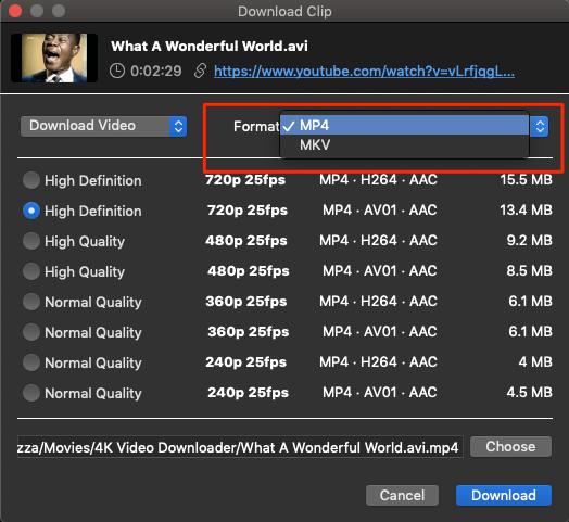 Select_Format