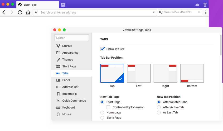 Vivaldi Browser Interface