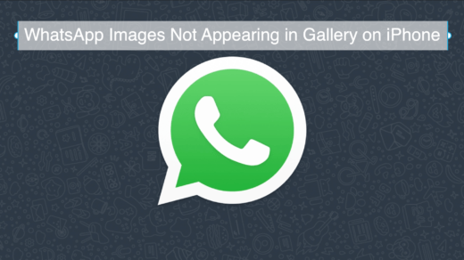 WhatsApp Images Not Appearing in Gallery on iPhone