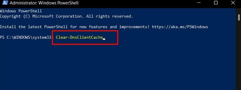 flush dns cache in windows 11 via powershell