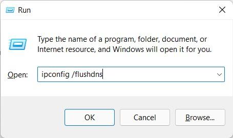 flush dns cache in windows 11 via run